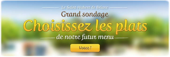 Innovation Restaurant Briare, Loiret, Région Centre - Sondage carte participative : le plat préféré des français - Le Saint-Hubert
