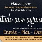 Plat du jour restaurant Briare, Loiret, Région Centre - Pintade aux agrumes maison